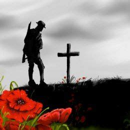 Flanders Poppy Remembrance Day