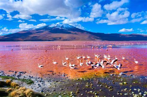 Laguna Colorada   13 of the most bizarre lakes in the ...