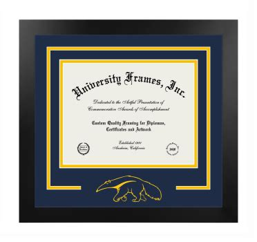 University of California Irvine Graduate School of ...