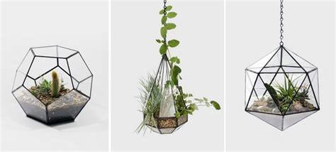 plante cuisine decoration un terrarium de plantes design pour votre maison