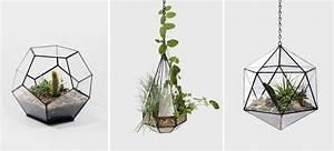 Terrarium Plante Deco : un terrarium de plantes design pour votre maison ~ Dode.kayakingforconservation.com Idées de Décoration