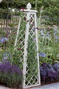Rankhilfe Clematis Selber Bauen : rankhilfen garden and flowers pflanzen suchen und ~ Lizthompson.info Haus und Dekorationen