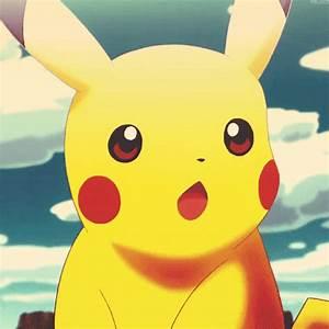 cute pikachu MEMEs