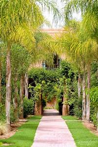 Palmenarten Für Draußen : die besten 25 palmenarten ideen auf pinterest palmen ~ Lizthompson.info Haus und Dekorationen