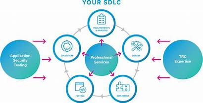 Services Professional Security Software Benefits Lifecycle Development