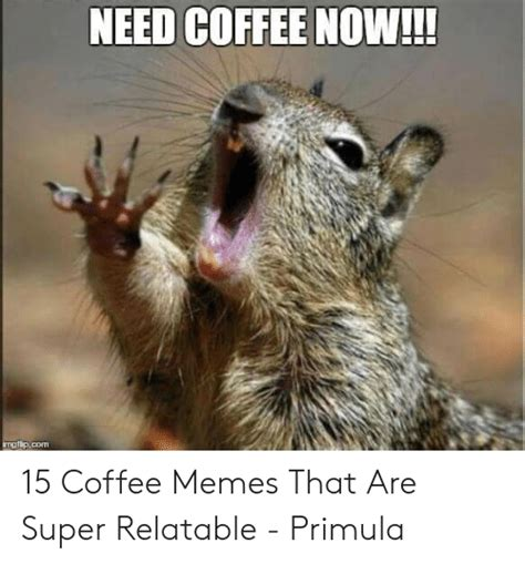 Coffee first, the rest later! NEED COFFEE NOW!!! Ngpcom 15 Coffee Memes That Are Super Relatable - Primula | Meme on ME.ME