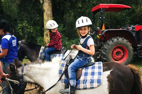 riding horse valhalla falls creek shoalhaven nsw coast south attractions farm huskisson holidays accommodation nd beach