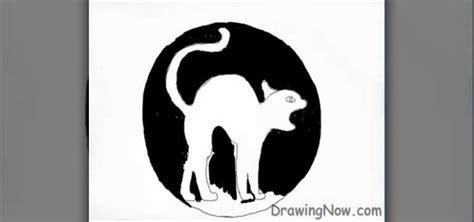 draw  halloween cat drawing illustration