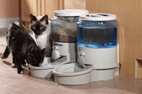 automatic cat feeder july 2013 neat pets dogs cats