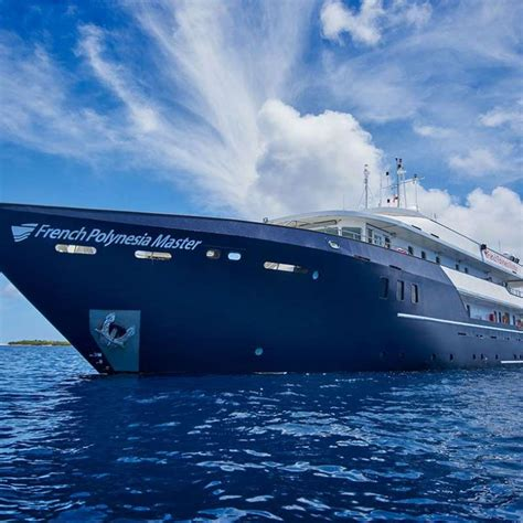 Dive Francesi Polinesia Francese Dive And Cruise
