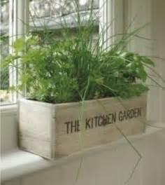kitchen herb garden ideas kitchen herb garden ideas by ammazed home garden ideas