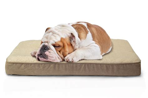 beds therapeutic dog bed  small dogs pet doggy sofa dog