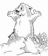 Groundhog Coloring Preschool Ground Printable Getdrawings Hog Sheet Happy sketch template