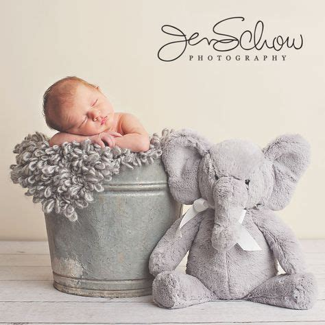 elephant theme  danae baby boy photography baby boy