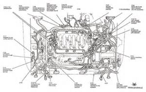 similiar 1995 ford taurus engine schematic keywords ford focus spark plug wiring diagram on 01 ford taurus engine diagram