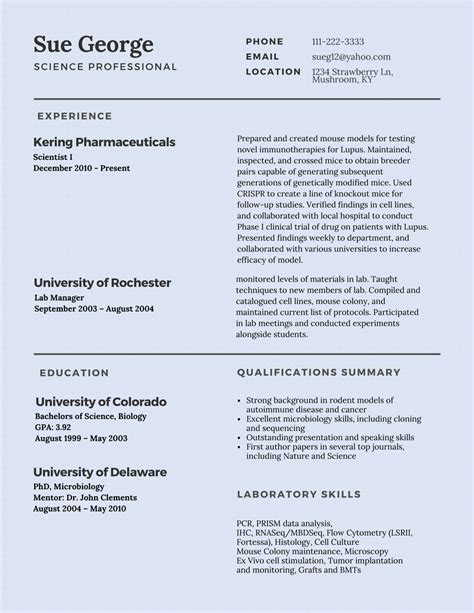 resume summary for change worksheet printables site