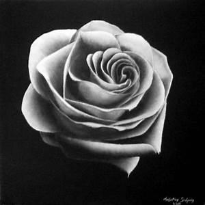 Fleur Rose Et Blanche : rose blanche christian salaun ~ Dallasstarsshop.com Idées de Décoration