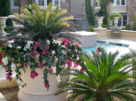 plants for outside garden decorating tips for your home or office