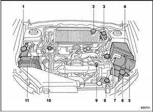2005 Hyundai Accent Transmission Diagram  U2022 Wiring And