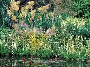 Plantes Vivaces Autour D Un Bassin : au bord d 39 un bassin d 39 une mare gamm vert ~ Melissatoandfro.com Idées de Décoration