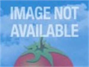 Definitely, Maybe (2008) - Rotten Tomatoes