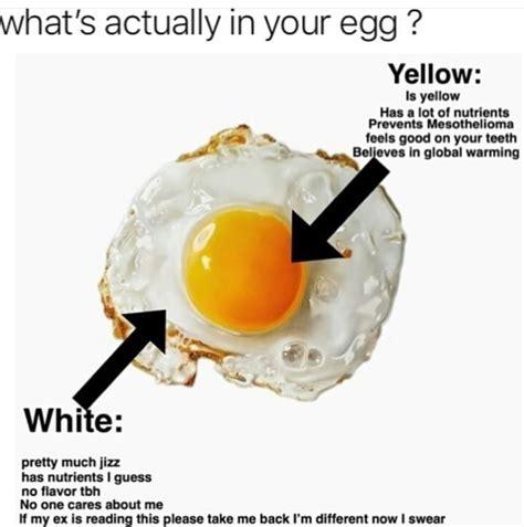 Egg Memes - latest memes memedroid
