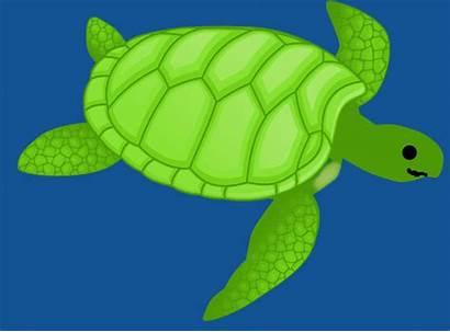 Turtle Sea Clip Clipart Clker Vector Royalty