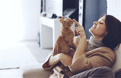 Pet insurance by pet experts. Need pet insurance? Compare cover and start saving   finder UK