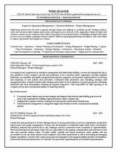 Resume Examples Templates Free Sample Project Manager