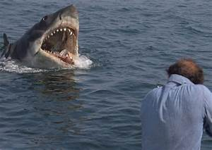 JAWS Great White Shark 8x10 1975 Classic Movie Photo ...