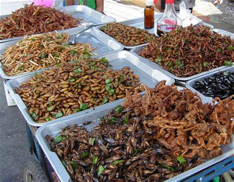 insecte de cuisine défi cuisine insectes