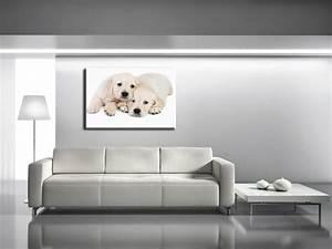 Decoration Murale Tableau : tableau animaux chiot pas cher tableaux deco design hexoa ~ Teatrodelosmanantiales.com Idées de Décoration
