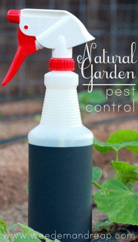 My Organic Garden Pest Control