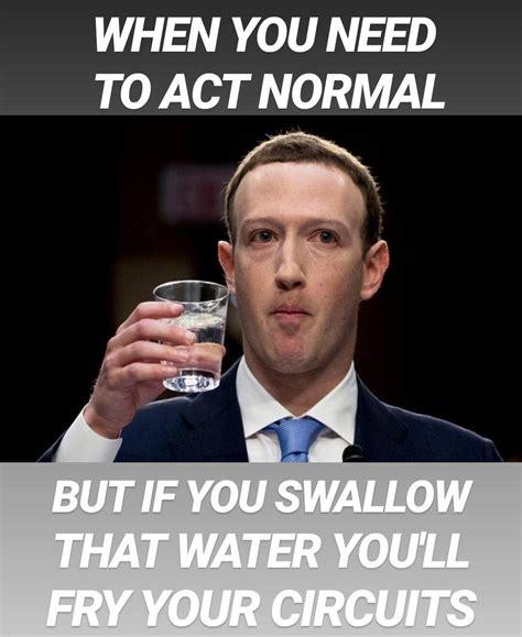 Mark Zuckerberg Memes - mark zuckerberg memes zuckerbergmemes twitter