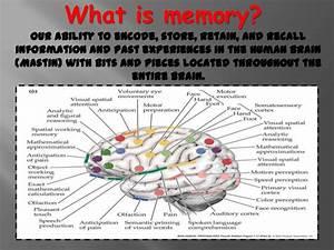 Memory Powerpoint