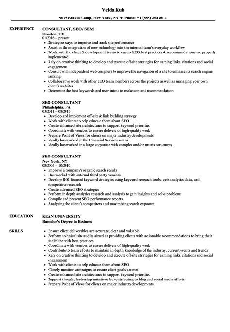 seo consultant resume samples velvet jobs