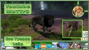 Zoo Tycoon 09 Leo Xbox One PT BR YouTube