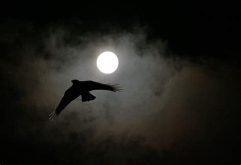 la chambre des morts nuit