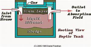 Septic Systems  How Septic Systems Work