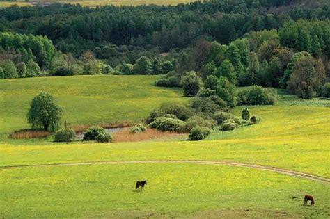 Geriausia vieta gyventi. Gal vis dėlto Lietuva? | Alkas.lt