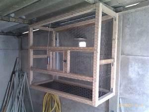 Fabrication D Une Voliere Exterieur : construction fabrication voli re ext rieur page 3 ~ Premium-room.com Idées de Décoration