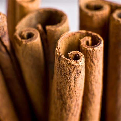 cinnamon stick fragrance oil candlescience