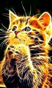 Cats 3D Wallpaper HD Desktop #4800 Wallpaper | WallDiskPaper