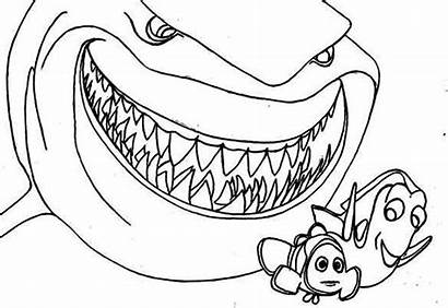 Bruce Coloring Pages Lee Printable Getcolorings Shark