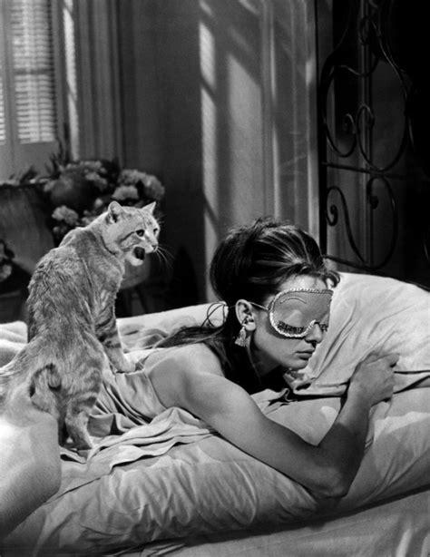 diamant sur canapé vf autour des chats les chats du cinéma