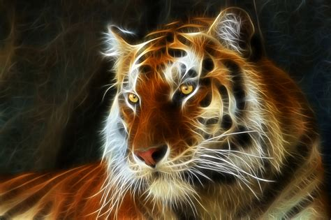 3d Animated Tiger Wallpapers - 3d animation tiger wallpaper www pixshark images