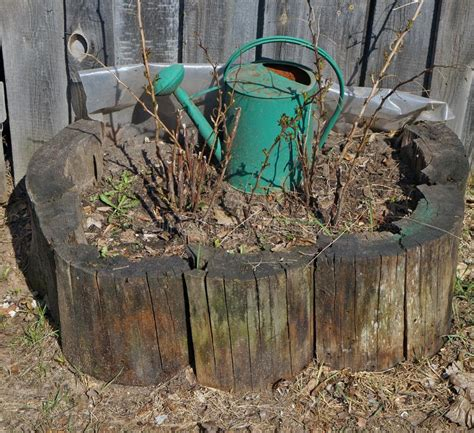 rusty watering decorated rural spring