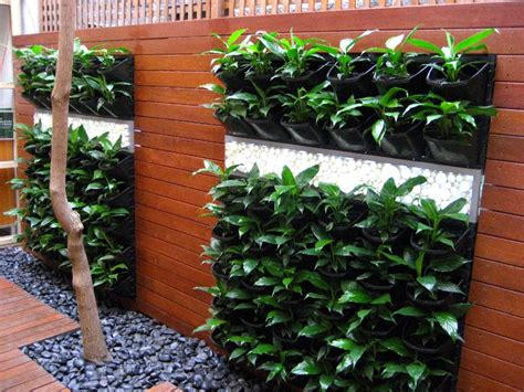 Of Vertical Gardens by Vertical Gardens And Roof Gardens Perth Western Australia