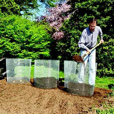 coltivare patate in vaso come coltivare le patate in 10 modi diversi greenme