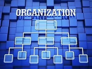 Deca Organization